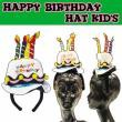 【キッズ】 バースデーハット * 誕生日パーティーにおすすめ♪
