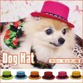 ☆再入荷☆大人気のドッグハット、ポップな色目のカラーバージョン♪【カラードッグハット カンカン帽】6色