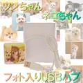 【ネコ・アニマルグッズ】かわいいワンちゃんネコちゃんフォト USBハブ【猫】