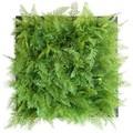 【ウォールグリーンデコール】Green Wall Decor ファーン Dark Green