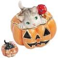 【 ハロウィン 】 宝石箱 ジュエリーボックス 【クロとモモのパンプキン】