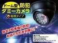 【予約販売】 ドーム型防犯ダミーカメラ(暗視タイプ)
