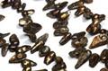 【天然石カットビーズ】淡水パール (銅色) 貝型 約8×13mm (数量限定商品)【天然石 パワーストーン】