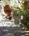 【ガーデン用品・カート】グリーンのディスプレイに最適! ワイヤー Oval カート