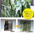 【夏休み大特集】【送料無料】グリーンシェード 4種【ガーデン】
