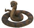メガシリーズ ガラガラヘビ