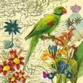 Paper+Design ペーパーナプキン  (鳥×フラワー)