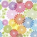 Paper+Design ミニペーパーナフキン 【フラワー】