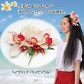 【2013春夏新作】華やかなハワイアンを演出♪★ヘアクリップ★【セール対象外】