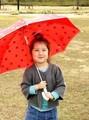 【定番】【折れにくい】ドット傘<ベビー・キッズ>入園入学/卒園卒業