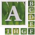 アルファベットA~I アートフレーム【ミニアート】フォント/文字柄<木製フレーム>