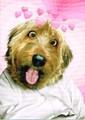 AVANTI PRESS バレンタインカード <犬×ハート>