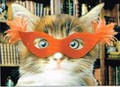 AVANTI PRESS バレンタインカード <猫×マスク>