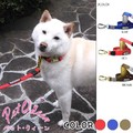 【犬用】☆テフロン ロック機能付リード(カラビナ)☆