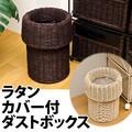 ラタンカバー付 ダストボックス ブラウン/アイボリー