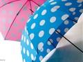 【3柄展開】《水玉シリーズ》 水玉 長傘