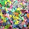 【 お祭り縁日商材 安価玩具】すくいどり アクリルネオンMIX コンパクト 貝殻