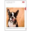 【LA DOLCE VITA】A4クリアファイル フレンチブルドッグ