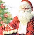 Paw Decor  Collection ペーパーナプキン クリスマス <サンタ×ツリー>