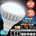 <LED電球・蛍光灯>30W撮影照明用LEDランプ 散光型  口金E26