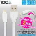 充電&データ通信可能!iPhone7もOK! iPhone/iPad用USBケーブル 100cm