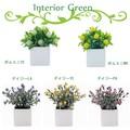 インテリアグリーン キューブポット【花】【緑】【観葉植物】【光触媒】【フェイクグリーン】