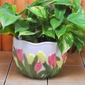 【ポルトガル製】陶器 植木鉢 黄 ピンク チューリップ 白 レリーフ プランター 《底穴あり》 中