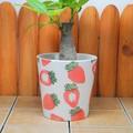 【ポルトガル製】陶器 植木鉢 いちご柄 真っ赤な ストロベリー ガーデニング プランター《底穴あり》小