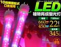 <LED電球・蛍光灯>植物や野菜の育成に最適! 植物育成用LED蛍光灯 119.8cm
