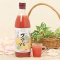 南国の香り グァバジュース(500ml)【原産国:日本】
