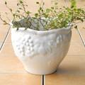 ポルトガル製  植木鉢 陶器 《底穴あり》 ホワイト グレープ ヨーロッパ ガーデニング  直植え用 17cm
