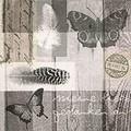 Paper+Design ペーパーナプキン バタフライ×羽
