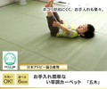【日本製】【直送可】洗えるPPカーペット 『五木』アウトドアにも