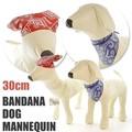 【今週のオススメ】小型犬バンダナドッグトルソーM フェイクレザー ぬいぐるみ ディスプレイ マネキン