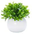 インテリアグリーン ラウンドポット ボックスウッド【緑】【観葉植物】【光触媒】【フェイクグリーン】
