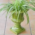 ポルトガル製 陶器 定番 コンポート フラワーポット 花瓶 アンティーク風 クラシック 緑 グリーン 高さ31cm