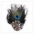 孔雀の羽キラキラ2wayブローチ b0184