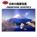【破格!!】【世界遺産】『富士山&桜』3Dカード【プレゼント・お土産・外人観光客・ノベルティ】