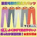 【秋冬定番】婦人裏起引き揃えスパッツ ☆L-LLサイズ☆