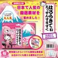 ★【ハローキティ】ピュアスマイル ハローキティ エッセンスマスク16枚セット★