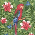 Paper+Design ペーパーナプキン 鳥 ジャングル