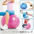 バランスボール55cm 2色アソート / 健康グッズ ボール バランス