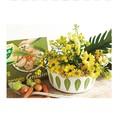 フラワーポストカード:ミニ野菜
