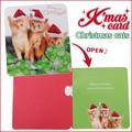 【アントレックス】可愛いクリスマスカード沢山♪【MGCカード(クリスマスキャッツ)】