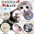 【缶バッジ】にゃんにゃん缶バッジ 6種 ネコ ねこ 猫 雑貨 かわいい アメショ 景品