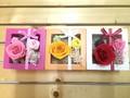 プリザアレンジ ボックス【ギフト】【プリザーブドフラワー】【春夏の花】