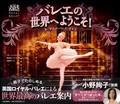 バレエの世界へようこそ!