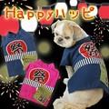 【2016春夏新作】【犬服】夏祭りやお散歩に最適!ハッピーハッピ