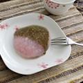 桜づくし 角皿