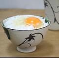 美味しいご飯はこのお茶碗で!!■常滑焼【食器/茶碗・飯碗/made in japan/】淳蔵唐草飯碗